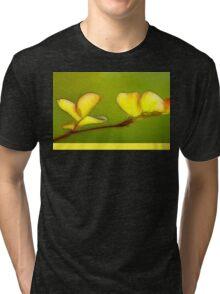 Springing Out Tri-blend T-Shirt