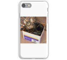 Rufus in a box iPhone Case/Skin