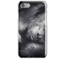 Sleeping Giant iPhone Case/Skin