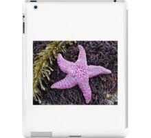 Sea Star iPad Case/Skin