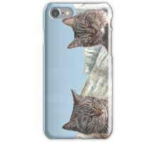 Tabby Cats iPhone Case/Skin