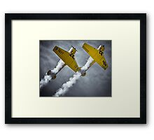 Two beautiful Harvards Framed Print