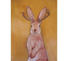 Jackalope Handpainted   Photographic Print
