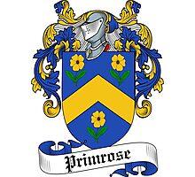 Primrose (16th Cent.) Photographic Print