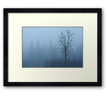 Emerging Tree Framed Print