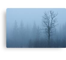 Emerging Tree Canvas Print