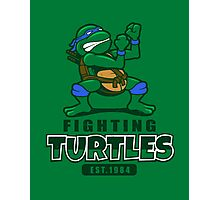 Fighting Turtles - Leonardo Photographic Print
