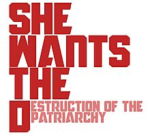 She wants the Destruction of the Patriarchy  Photographic Print