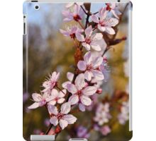 Almond Blossoms in Spring iPad Case/Skin