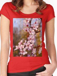 Almond Blossoms in Spring Women's Fitted Scoop T-Shirt