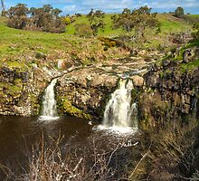 Twin Falls by Bette Devine