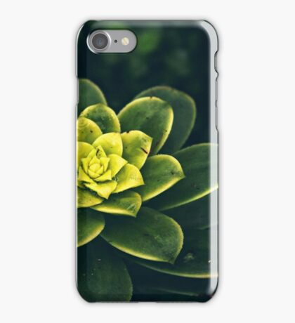 Tropical Plant iPhone Case/Skin