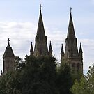 'A Sense of Place', Beautiful Spires of St. Peters Anglican Cathedral. Adelaide C.B.D.  by Rita Blom