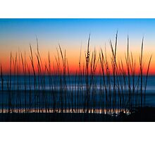 Dune Grass Dawn Photographic Print