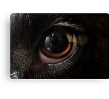 Macro Dog Eye Canvas Print