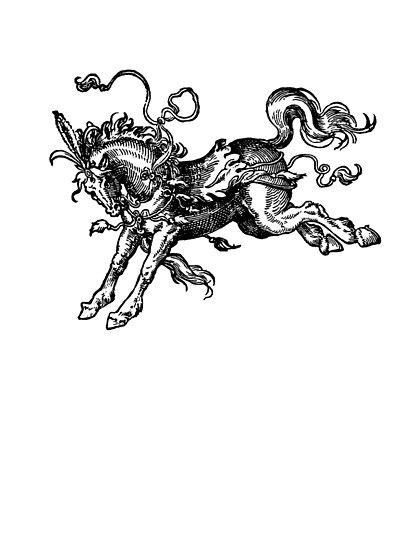 Bucking horse by giddyaunt