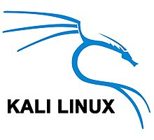 Kali Linux Stickers Photographic Print