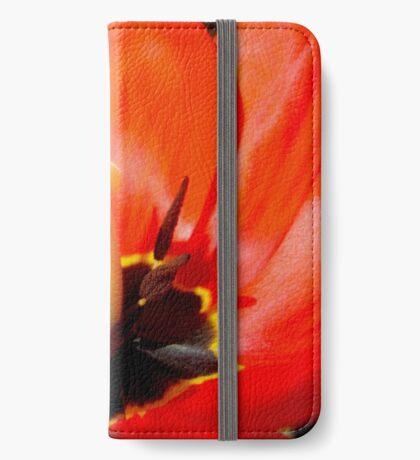 spring dance iPhone Wallet/Case/Skin