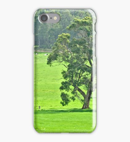 In the cow paddock iPhone Case/Skin