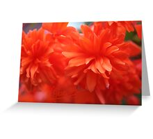 Smell This Picture  . Dr.Andrzej Goszcz. Canon 5D Mark II. Greeting Card