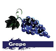 fruit grapes,Hand drawn watercolor  Photographic Print