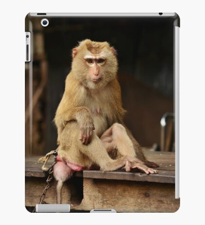 Piercing Eyes iPad Case/Skin