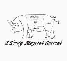 A Truly Magical Animal Kids Clothes