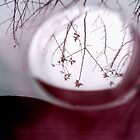 A glimpse of my world in a bubble by crystalline