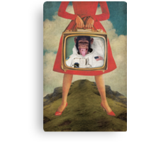 Animal Collection -- Monkey See Monkey Do Canvas Print