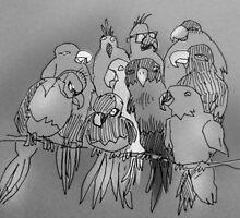 Parrots, apparently by Matt Mawson