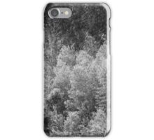 eucalyptus forest iPhone Case/Skin
