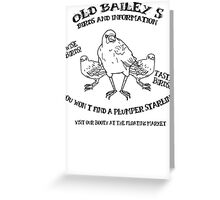 Old Bailey's Birds Greeting Card