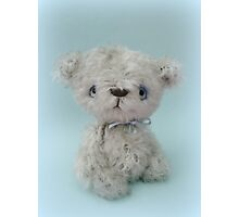 Handmade bears from Teddy Bear Orphans - Bobby Photographic Print