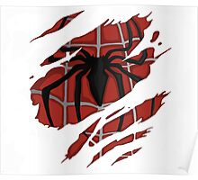 Ripped Spidey Poster