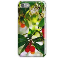 Bright and Beautiful Berries iPhone Case/Skin