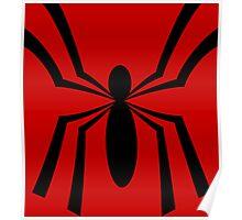 Ben's Other Spider Poster