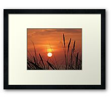 Honey Sky © Framed Print