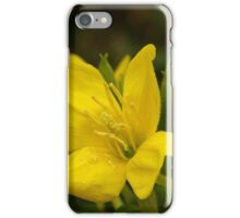 Sundrops ~ Yellow Delight iPhone Case/Skin
