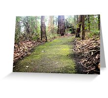 The Path Often Travelled Greeting Card