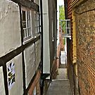 Rosemary Alley by John Thurgood
