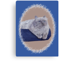Bayou - A Portrait of a Himalayan Cat  Canvas Print