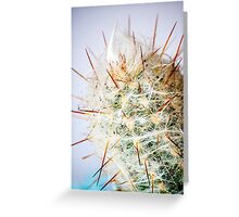 Feeling prickly cactus print Greeting Card