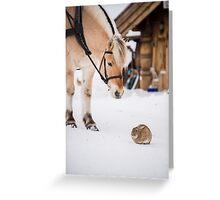 Hest og kanin Greeting Card