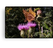 Early Fall Dinner Canvas Print
