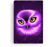 Pink Owl Eyes Canvas Print