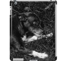 Shadow 2 iPad Case/Skin
