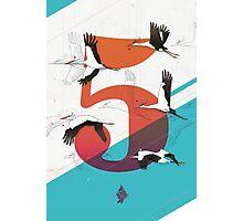 5Birds Photographic Print
