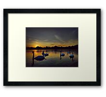 Sunset Swans Hyde Park Framed Print