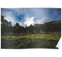 Rocky Mountain 1 Poster
