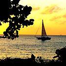 Sailing at Sunset by Barnbk02